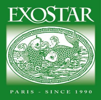 logo-star-massena